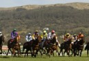 Cheltenham Festival 2013 – Races and Tickets